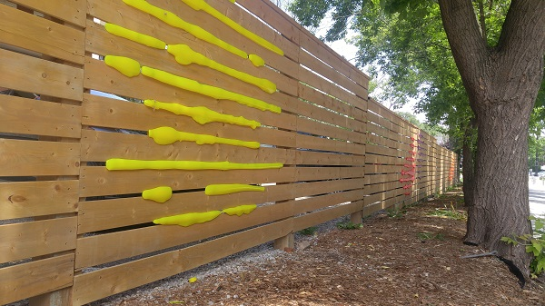 Wooden fence with colourful yellow material squeezing through slats in fencing